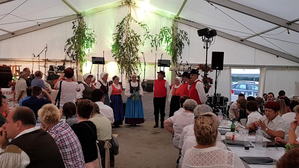 Folklorna skupina Večerna zarja